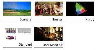 Splendid™ Video Intelligence Technology